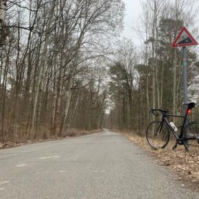 Bergtraining in Berlin: Grunewald vs. Müggelberg
