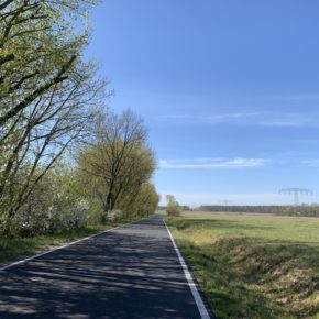 Spreewaldmarathon – Corona-Edition